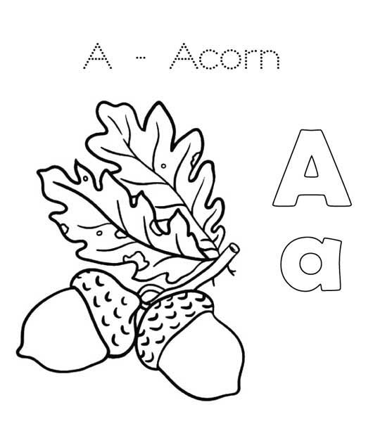 Best Free Printable Acorn Coloring Pages For Kids