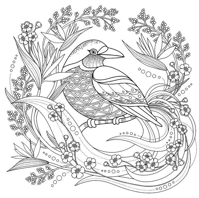 12 Best Free Printable Bird Coloring Pages For Kids