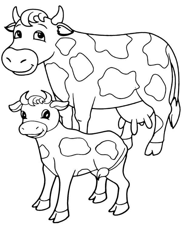 12 best free printable cow coloring pages for and adults