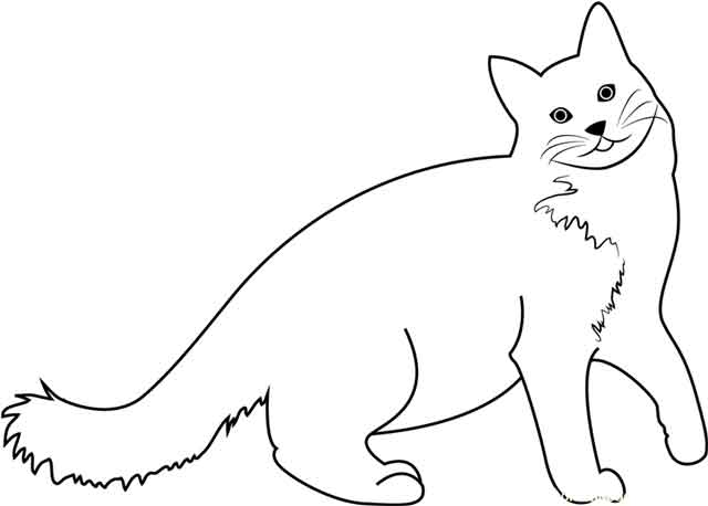 11 Best Free Printable Cat Coloring Pages For Kids